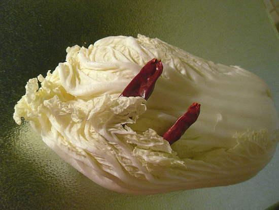 """symbolisches Foto zu """"Kimchi"""" - hier die Hauptgestandteile"""