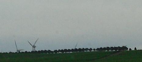 Wohin das Auge schweift - Windmühlen am Horizont
