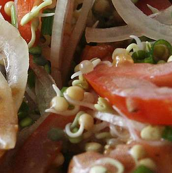 Salat mit gekeimtem Senf