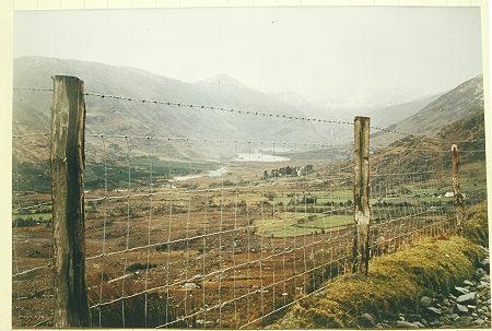 Zaun, der was taugt