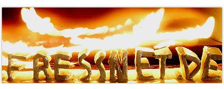 Logo eines Diätspezialisten in Flammen
