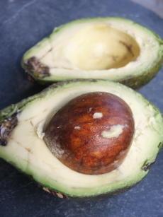 Avocado, aufgeschnitten