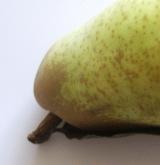 Wie viele Kalorien hat diese Birne? - größere Abbildung weiter unten