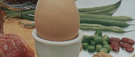 """Logi-Pyramide, Ausschnitt: """"Hülsenfrüchte hinter dem Ei"""""""